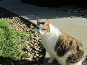 Tasha_outside